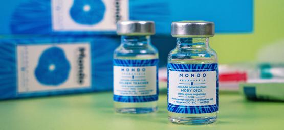 Wie Und Warum Man Eine Sporenampulle Verwendet