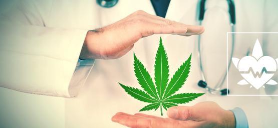Was Ist Die Beste Konsummethode Von Medizinischem Cannabis?