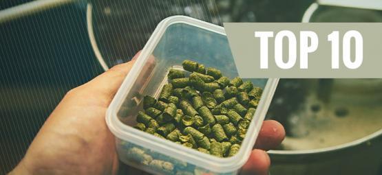 Top 10 Der Häufigsten Fehler Beim Hausbrauen