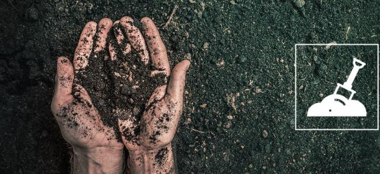 Was Ist Wiederverwendeter, Biologischer Mutterboden Und Wie Stellt Man Diesen Her?