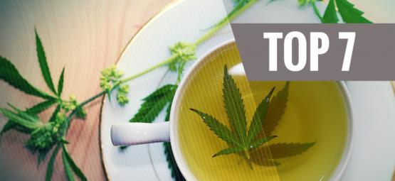 Die 7 Besten Psychedelische Tees Für Die Zubereitung Zuhause
