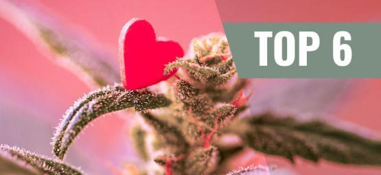 Top 6 Valentinstag Cannabissorten