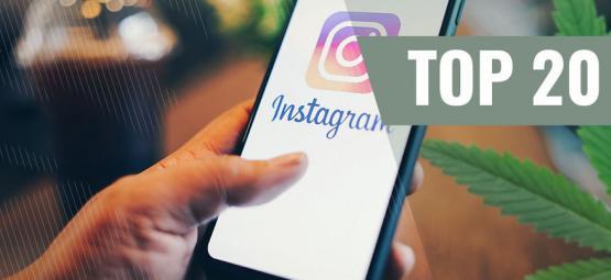 Top 10 Der Weed-instagram-profile, Denen Du Unbedingt Folgen Solltest
