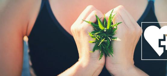 Kann Dir Cannabis Helfen, Abzunehmen?
