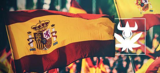 Top 10 Sorten Der Spanischen Cannabis Clubs