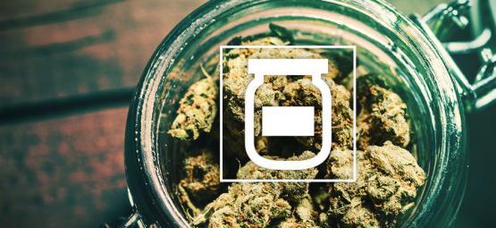 Schimmelbildung Bei Der Lagerung Von Cannabis Vermeiden
