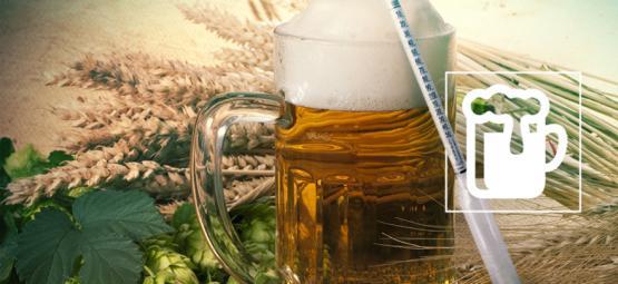 Das Hydrometer: Das Geheimnis Für Das Brauen Eines Guten Bieres