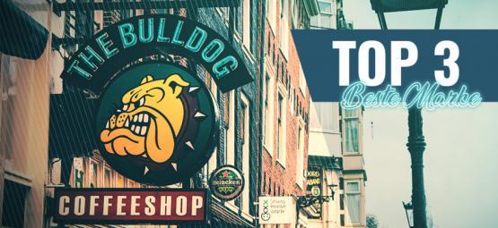 Die 3 Besten Marken-Coffeeshops In Amsterdam