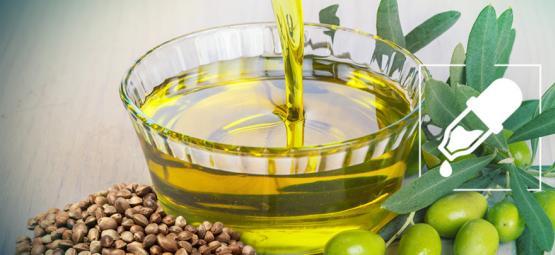 Was Ist Der Bessere Trägerstoff Für CBD: Hanfsamenöl Oder Olivenöl?