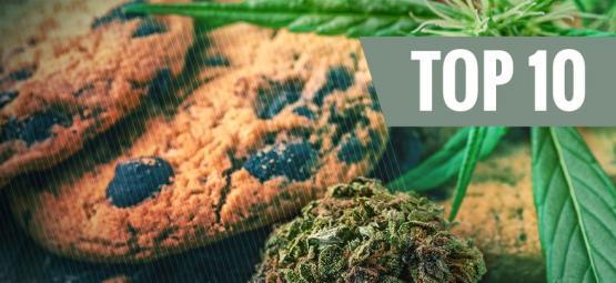 Die Top 10 Fehler Beim Kochen Mit Cannabis (Und Wie Du Sie Vermeidest)