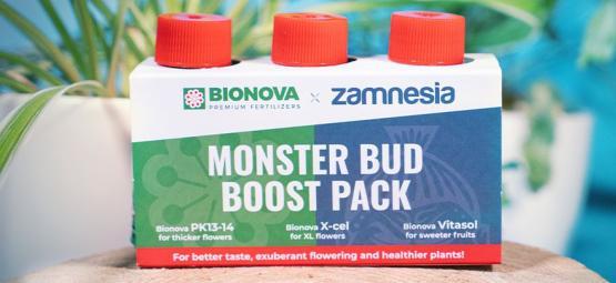 Verwende Das Monster Bud Boost Pack Für Fruchtigere Cannabis-Buds