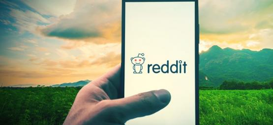 Die Top 10 Weed-Communities Auf Reddit