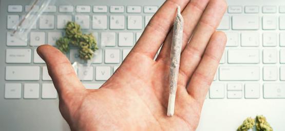Cannabis Karriere - Finde Deinen 420 Traumjob