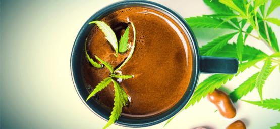Wie Man Cannabis Kaffee Macht