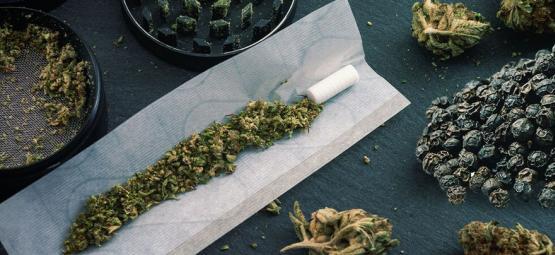 Reduziert Schwarzer Pfeffer Durch Cannabis Ausgelöste Angst?
