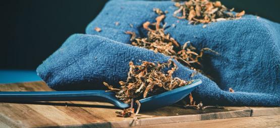 Wild Dagga - Ein Sanftes Betäubungsmittel