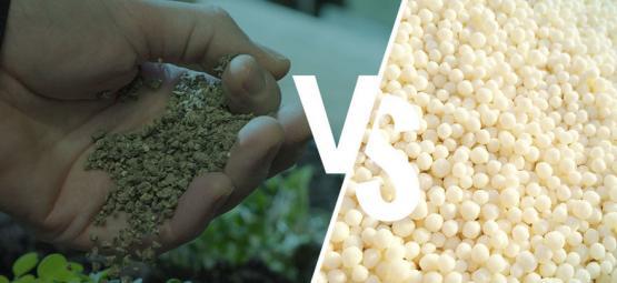 Was Ist Der Unterschied: Synthetische Düngemittel Im Vergleich Zu Natürlichen