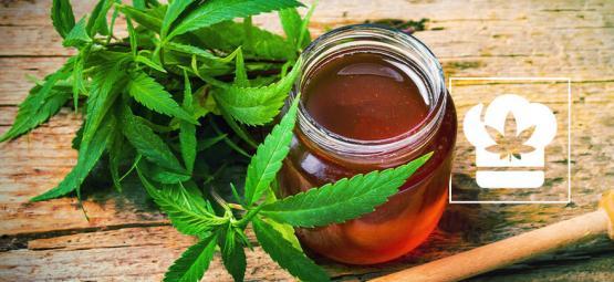 Rezept: Wie man mit Cannabis anreicherten Honig herstellt