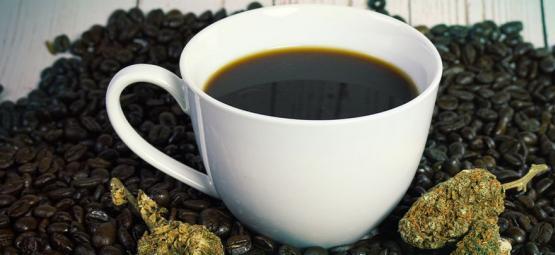 Kann Kaffeekonsum Dein High Beeinflussen?