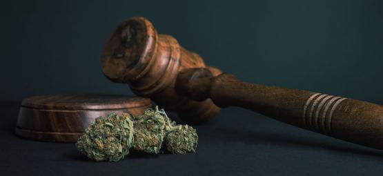10 Gründe, Warum ALLE Drogen Legalisiert Werden Sollten