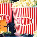 Die 5 Besten Kifferfilme, Die Du Wahrscheinlich Nicht Gesehen Hast