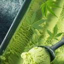 Wie man Cannabis Eis herstellt