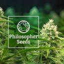 5 Tipps von Philosopher Seeds wie man autoflowering Samen