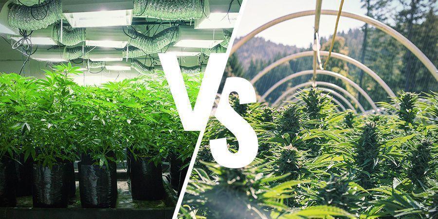 Was unterscheidet den Indoor- vom Outdoor-Anbau?