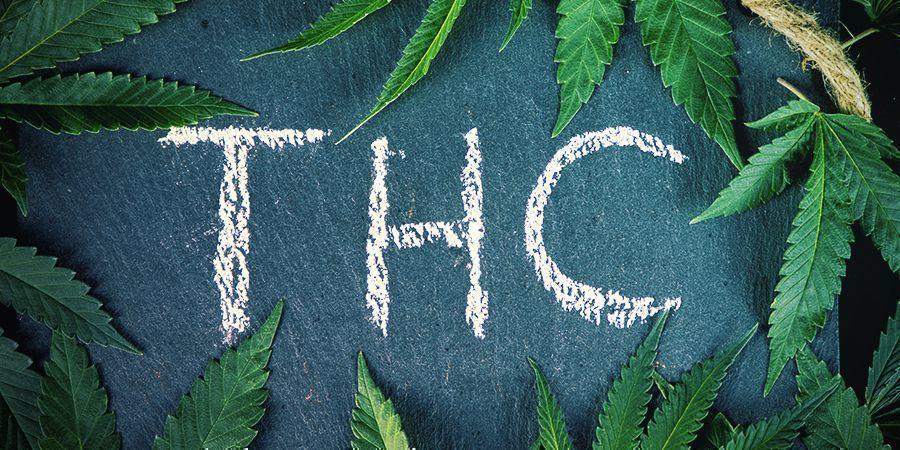 Was ist der Unterschied zwischen Hanf und Cannabis?