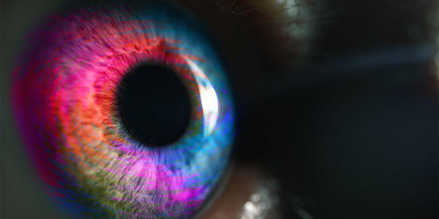 Psychedelische Erfahrung Der Zweiten Stufe - Timothy Leary