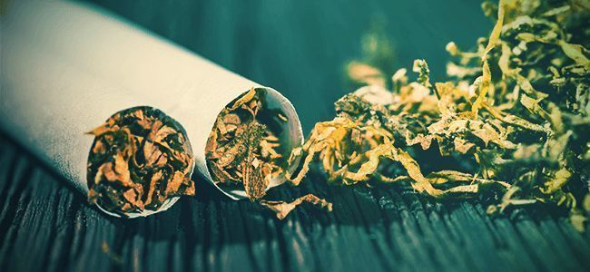 Top 10 Reasons To Quit Tobacco And Smoke Pure Marijuana