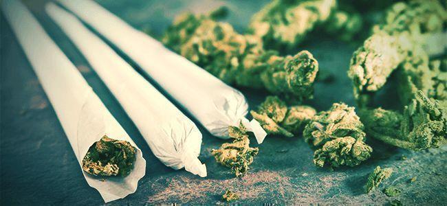 Cannabis Rauchen Joint