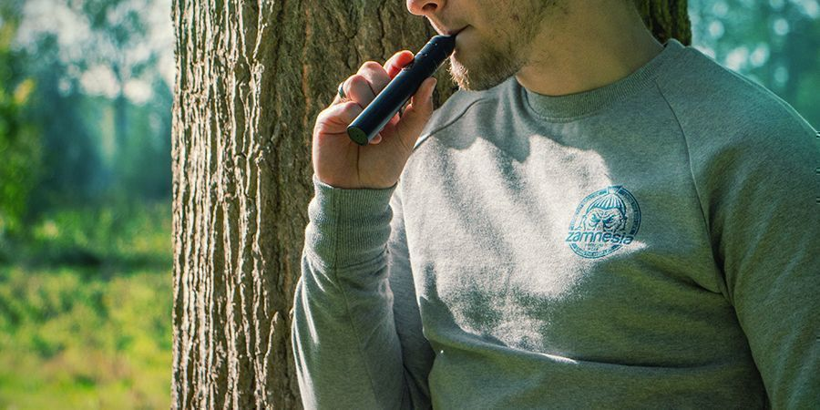 EVERYTHING YOU NEED TO KNOW ABOUT PORTABLE VAPORIZERS