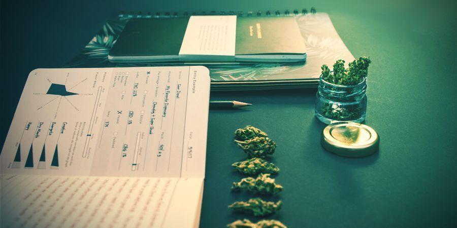 Kaum Angst Auslösendes Cannabis