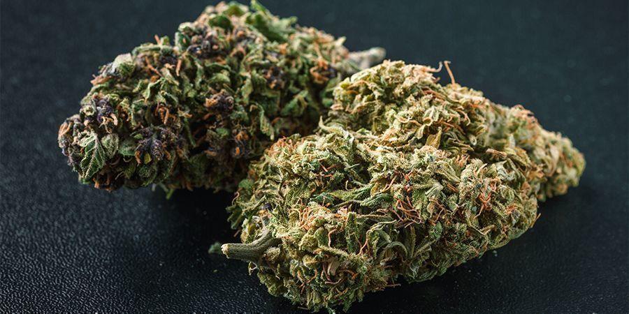 Welche Cannabisfarben Gibt Es?