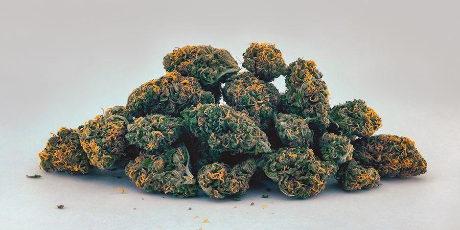 Yellow/Orange (Carotenoids) Cannabis Buds