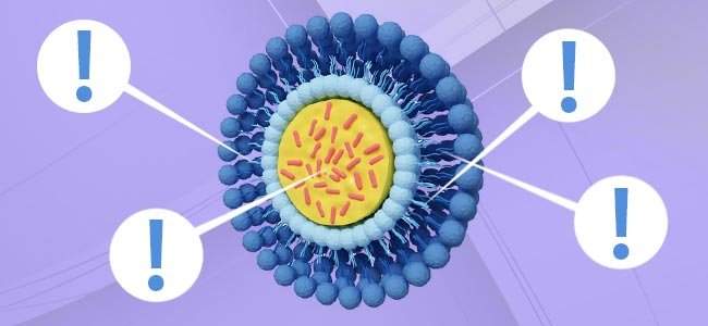Liposomes And Absorption: The Facts