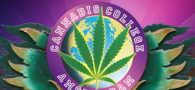 Cannabis Culture Awards And The Cannabis College