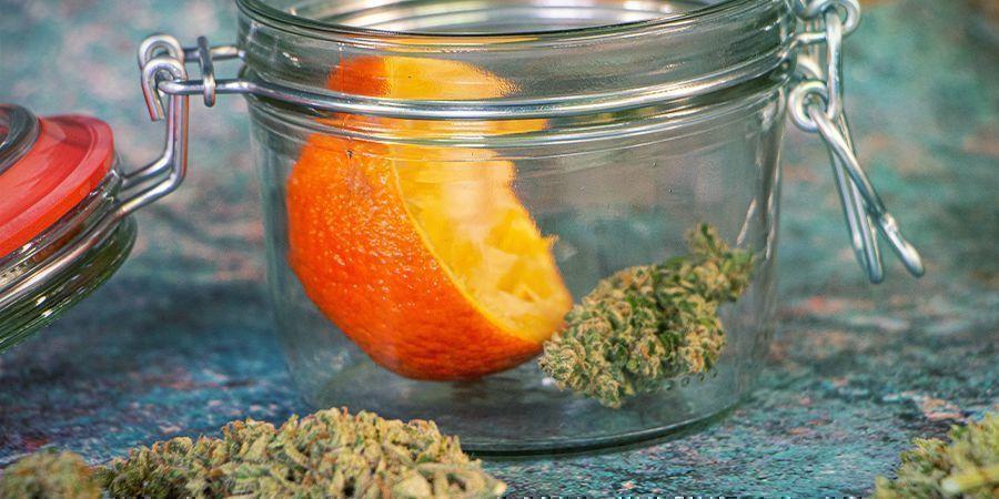 Cannabisblüten rehydrieren: Orangenschalen