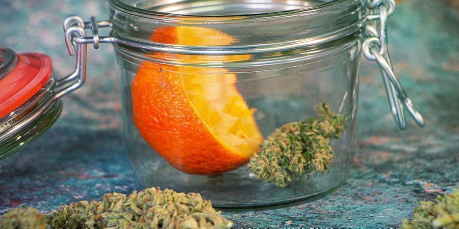 Rehydrate Your Cannabis Buds: Orange Peels