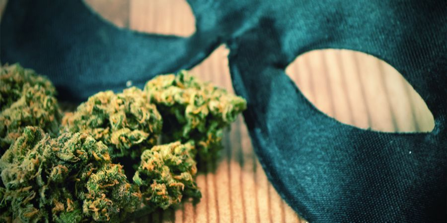 Create Your Own Cannabis-related Halloween Costume