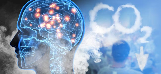 The Science Behind Hotboxing