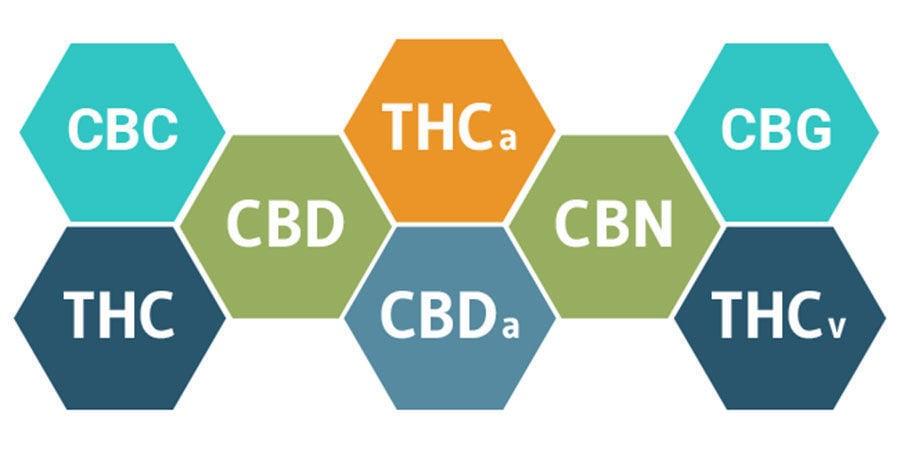 Entourage Effect and Cannabinoids