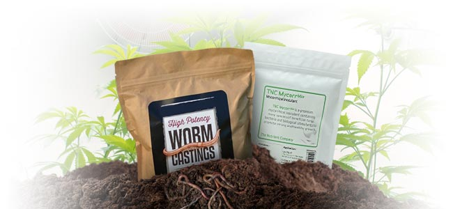 REBUILD THE MICRO-LIFE OF YOUR SOIL