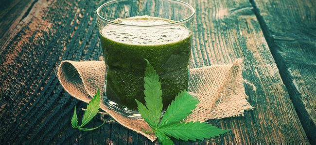 Cannabis Leaf Superfood Smoothie Recipe