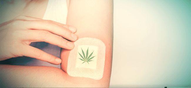 Cannabis TOPISCHE ANWENDUNG/KOSMETIKA