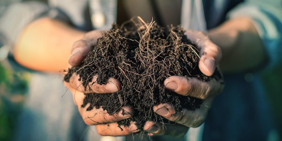 Soil Composition Matters