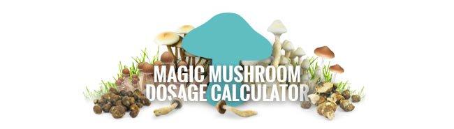 Use Our Magic Mushroom Dosage Calculator