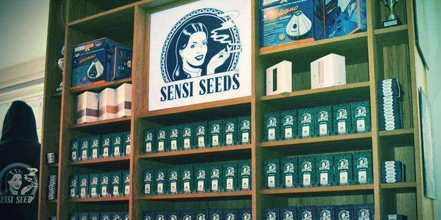 SEEDBANK OF THE MONTH: SENSI SEEDS