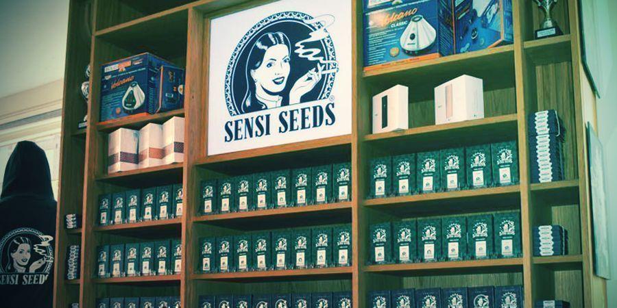 SEEDBANK OF THE MONTH: SENSI SEEDS